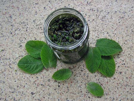 Wild Cornish apple mint sauce.