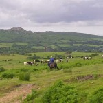 Horse riding on Bodmin Moor